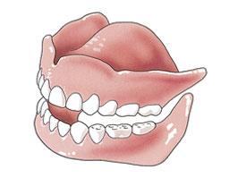 Tanden en kiezen zijn belangrijk voor het kauwen, spreken en het uiterlijk